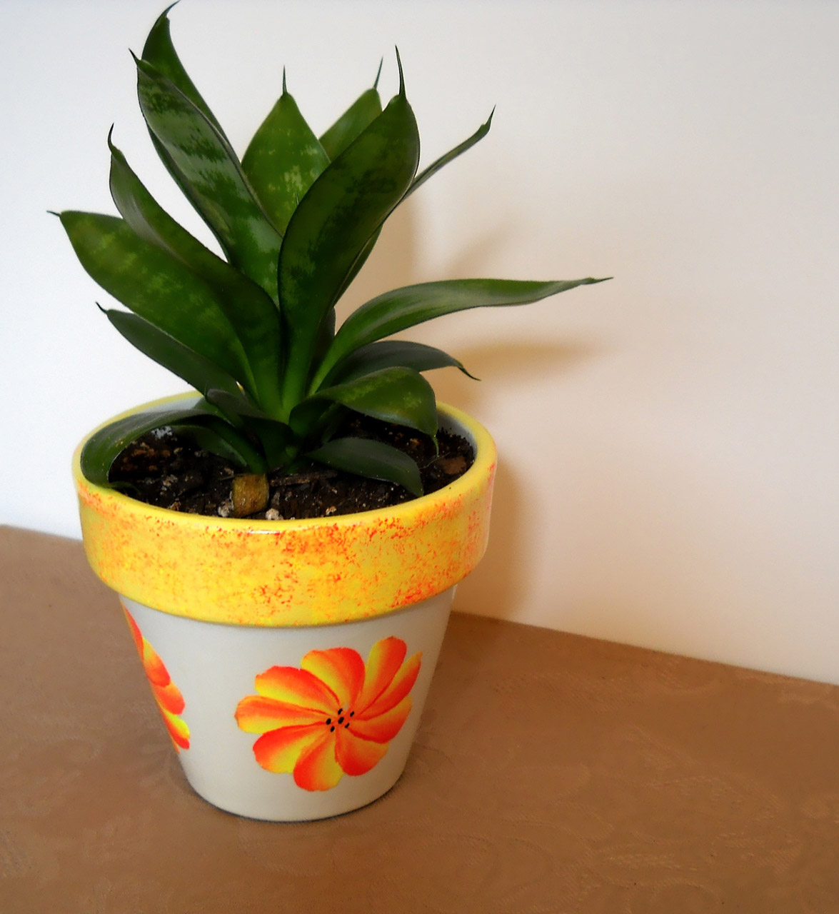 Moving Your Plants To Your New Home Bekins